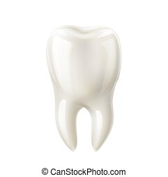 Vector realistic white tooth mock up 3d icon