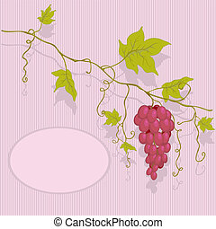Vector red grapes.