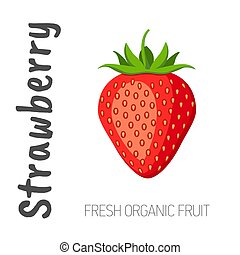 Vector red strawberry isolated on a white background with the words Strawberry