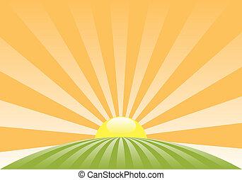 vector, resumen, paisaje rural, con, sol creciente