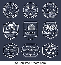 Vector retro set of farm fresh logotypes. Vintage labels...