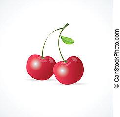 Vector Ripe red cherry berries
