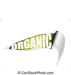 Vector ripped paper organic poster