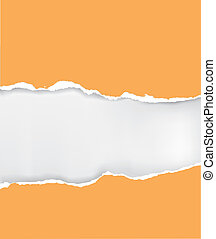 Vector ripped paper - Vector illustration of orange ripped...