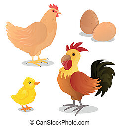 Vector Rooster, Hen, Chick and Eggs - Vector Illustration of...