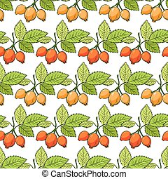 Vector Rosehip Sosa Berries Stripes Seamless Pattern graphic...