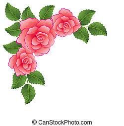 roses - vector roses with leaves