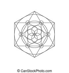 Vector Sacred Geometry Symbols With Triangle Hexagon Circle And Floral Motif Mystical
