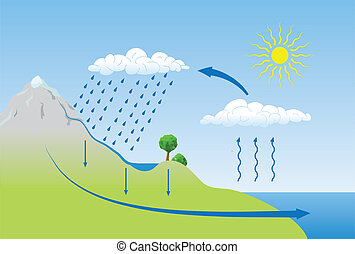 Vector schema of the water cycle in nature