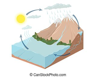 Vector schematic representation of the water cycle in nature. Isometric infographics Illustration.