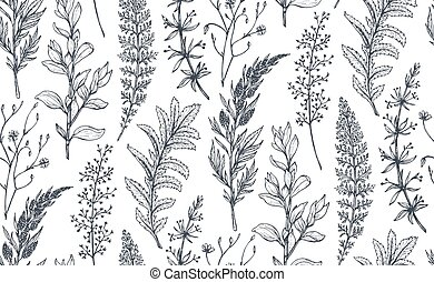 Vector seamless pattern with hand drawn herbs and flowers
