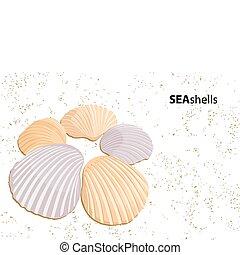 Vector seashells - Vector background (some seashells on...