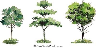 Vector - seasons tree