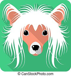 dog Chinese Crested icon flat design