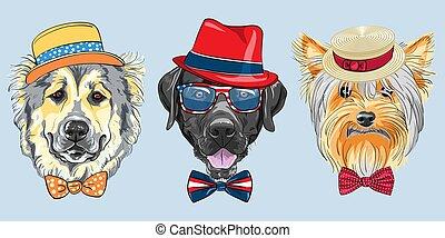 vector Set 3 cartoon hipster dogs