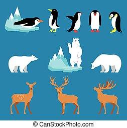Vector set Arctic and Antarctic animals. Penguin, polar bear, reindeer.