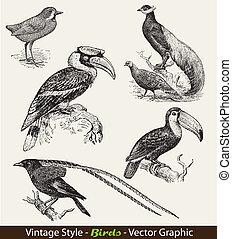 vector set birds - vintage style
