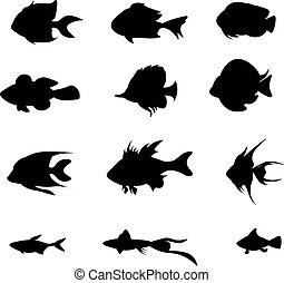 Vector set black fish isolated on the white background