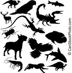 vector, set, dieren