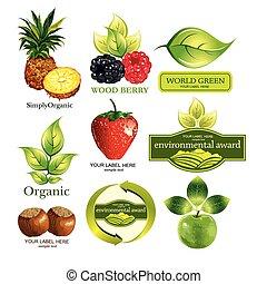 Vector set fruits and ecological em