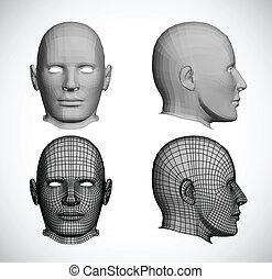vector, set, heads., vrouwlijk
