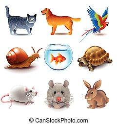 vector, set, huisdieren, iconen