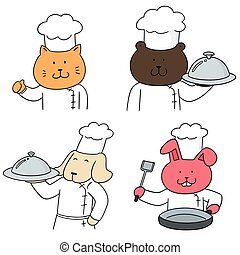 vector set of animal chef