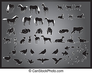 vector set of animals background