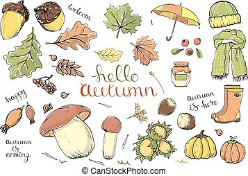 Vector set of autumn items. Cartoon colored isolated objects on a white background. Multicolored hand drawn illustration.