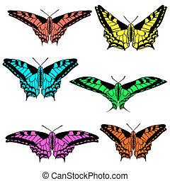 Vector set of beautiful butterflies.