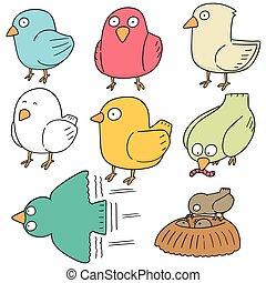 vector set of bird