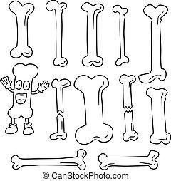 vector set of bone