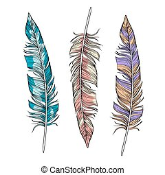 Vector set of bright  feathers