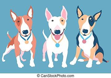 Vector set of Bull terier dog