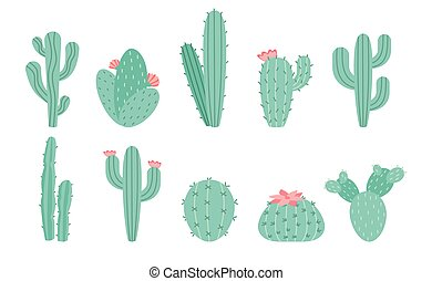 Vector set of cacti isolated on white background