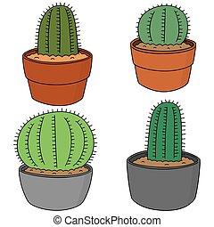 vector set of cactus