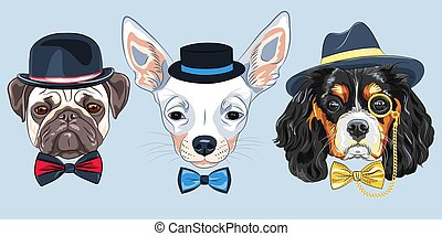 vector Set of cartoon hipster dogs - Set of hipster dogs in ...