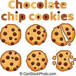 vector set of chocolate chip cookies