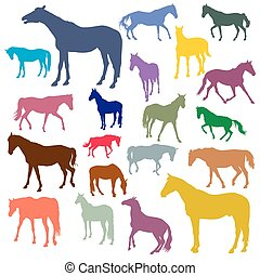 Vector set of colorful horses silhouettes
