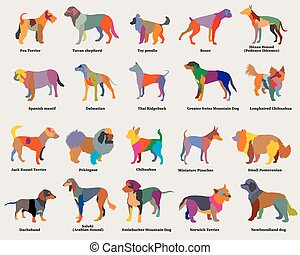Vector set of colorful mosaic dogs silhouettes