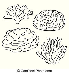 vector set of coral