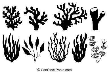 Vector set of corals and seaweeds silhouettes. Underwater coral reef and sea kelp in hand drawn doodle style. Marine aquarium plants illustration.