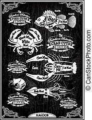 vector set of diagram cut carcasses