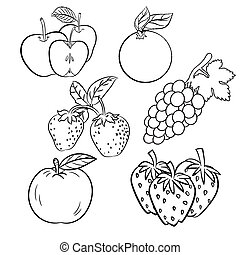 Vector set of different hand drawn fruits-Vector sketch Design