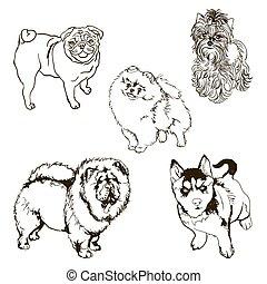Vector set of dog breeds silhouette - Set of pet dog. Black...