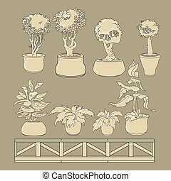 Vector set of doodle house plants in ceramic pots.