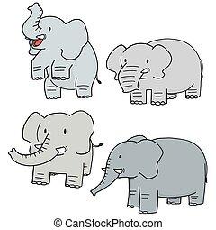 vector set of elephant