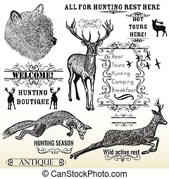 Vector set of engraved hand drawn animals deer, bear, fox...
