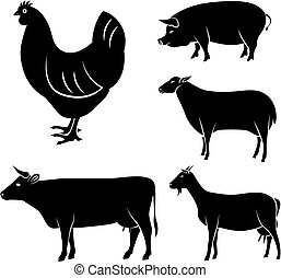 vector set of farm animals chicken,