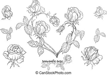 Vector set of flower compositions with rose flowers.Heart of flowers.